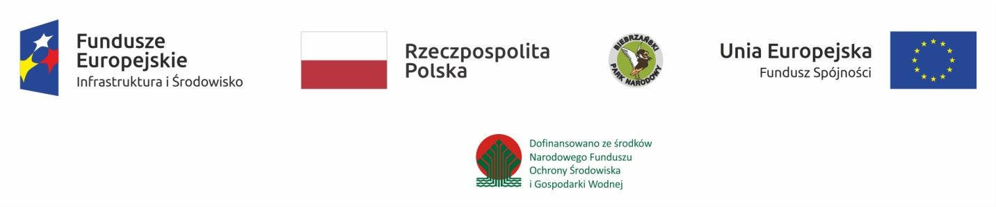 Logo_POIiS_PlanOchrony_kolor